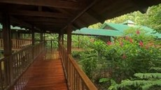 Selva Verde Lodge & Rainforest Reserve