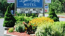 Lyn Aire Motel