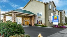Comfort Inn & Suites, Fortuna