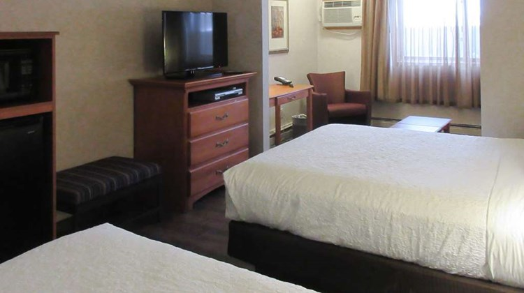 Quality Inn & Suites Detroit Lakes Room