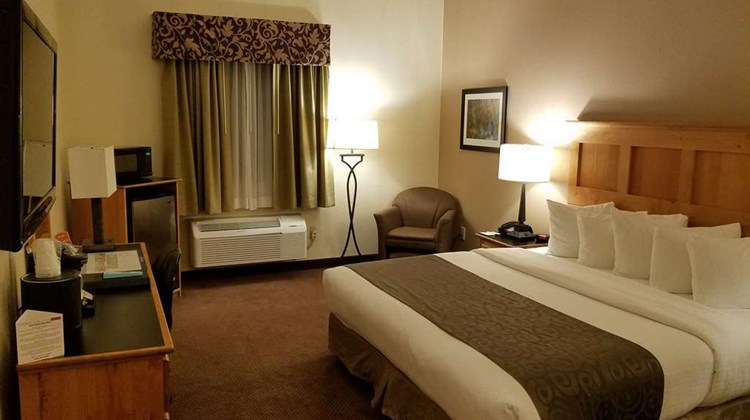 Best Western Brighton Inn Room