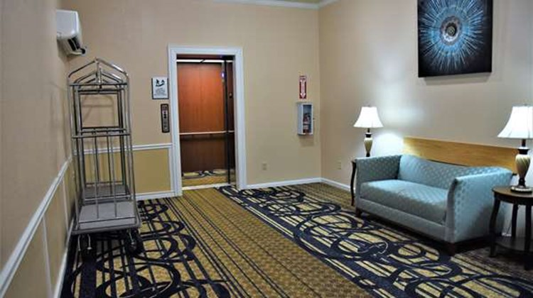 Best Western Spring Hill Inn & Suites Other