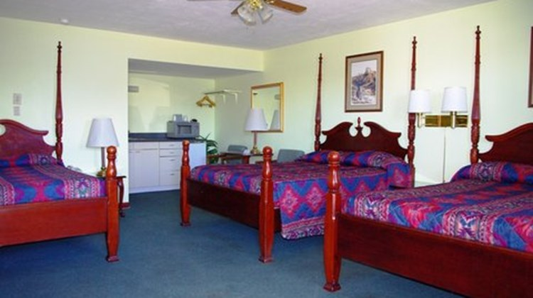 Blue Spruce Motel Room