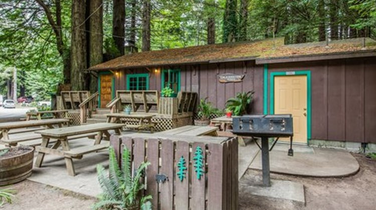 Emerald Forest Cabins & RV Recreation