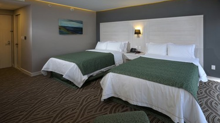 Holiday Inn Express Pachuca Room