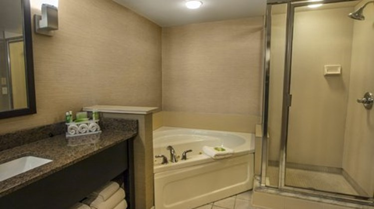 Holiday Inn Express Hotel and Suites Buf Suite