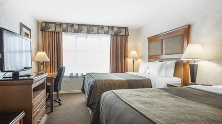 Comfort Inn & Suites Kamloops Room