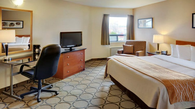 Comfort Inn Airport East Room