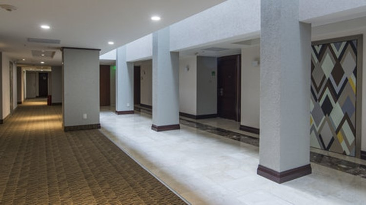 Holiday Inn Tuxtla Gutierrez Other