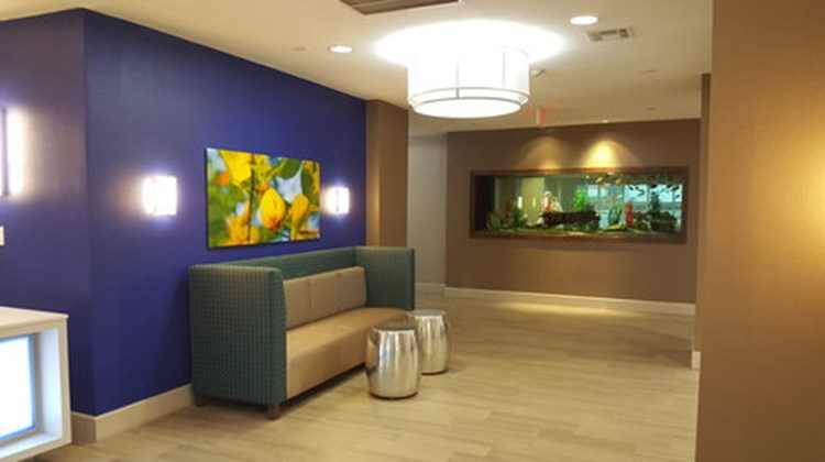 Holiday Inn Express & Suites Pearland Other
