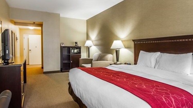 Quality Suites Freeport Room