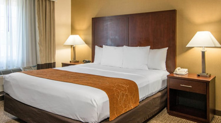 Comfort Suites Linn County Fairground Suite