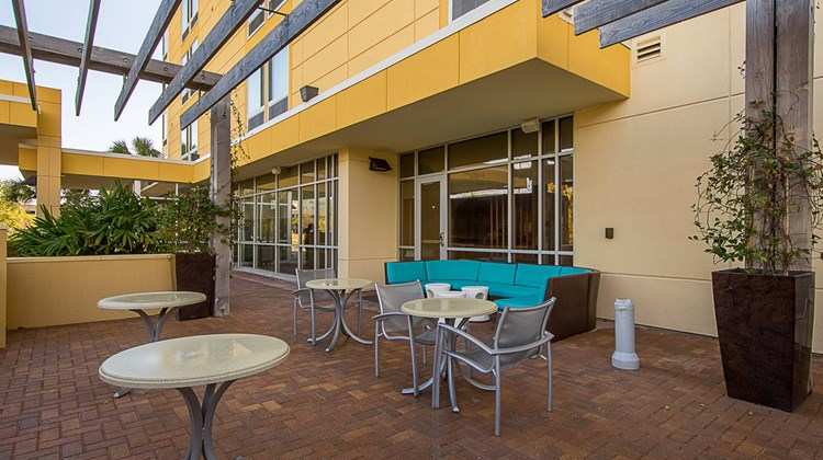 SpringHill Suites Tampa North Other